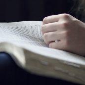 Spotkanie Kręgu Biblijnego – link