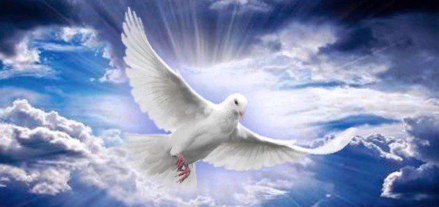 """Sesja """"Czas Chwały –  Uwielbienie i Proroctwo"""""""