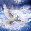 Już po raz piąty Msza wotywna o Duchu Świętym  czwartek 25.05. 2017  godz.19.30